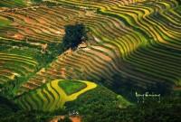 Lịch hành trình phượt Hà Giang cho xe máy và ô tô