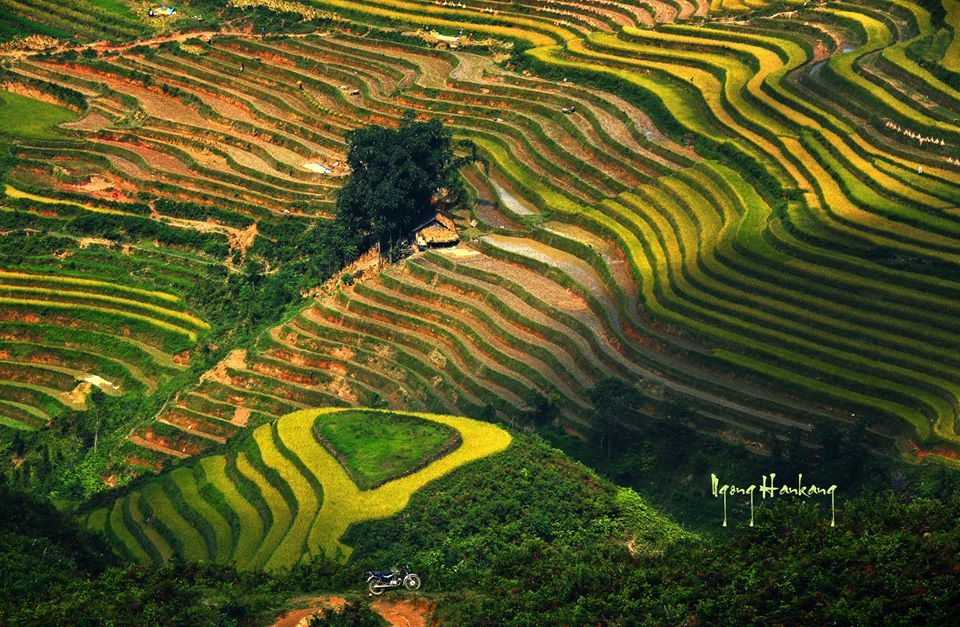 Ruộng bậc thang Hà Giang