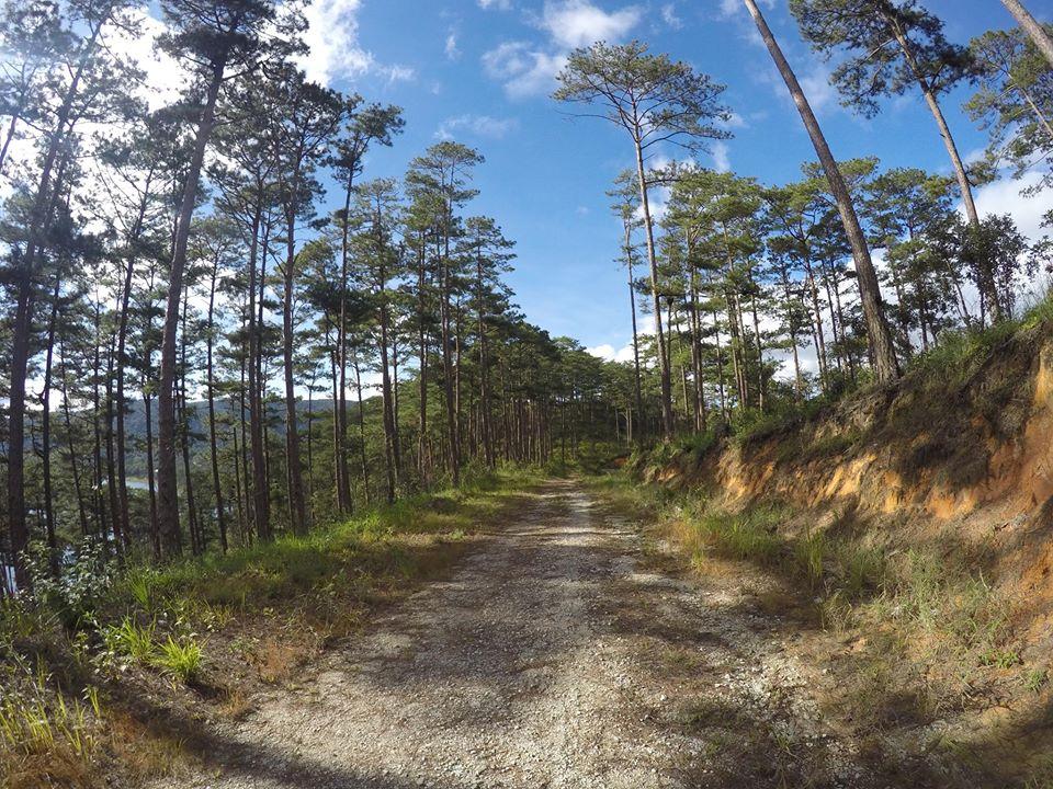 Đường lên đỉnh Pinhatt